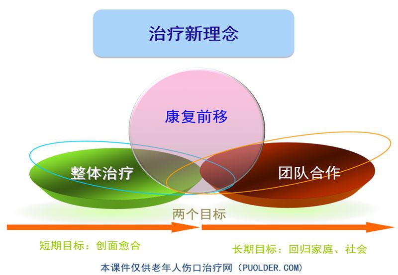 2017压疮整体治疗及新理念(龚广钊)