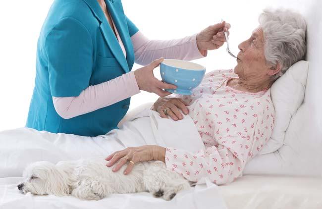 长期卧床病人的营养饮食