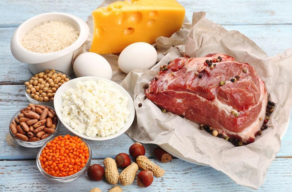 医学科普 - 肾脏病病人该吃动物蛋白还是植物蛋白