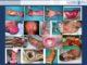 创面治疗临床思路浅议2018-广东省人民医院烧伤与创面修复外科赖文