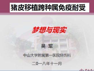 猪皮免疫耐受-中山大学附属第一医院烧伤科吴军
