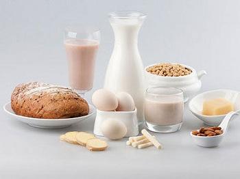 蛋白质食物